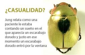 Jung-y-el-escarabajo