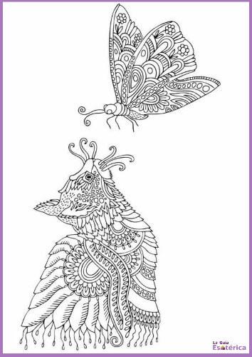Imagen de mandala de mariposa y gato