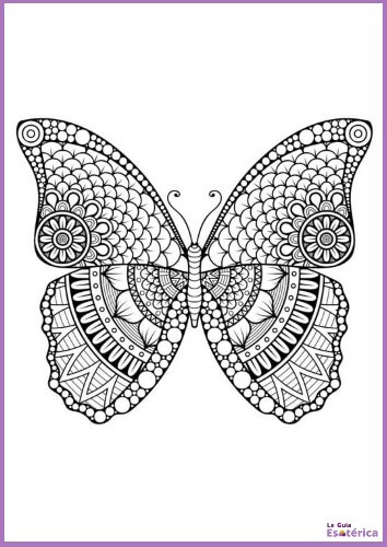 Mandala de mariposa para pintar