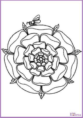 Mandala de rosa para colorear